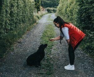 dog trainer with treat and small black dog